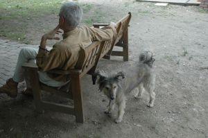 haattal-kutyaval